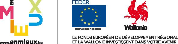 logo_FEDER+wallonie